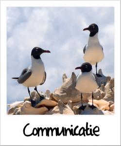 Communicatie Bonaire