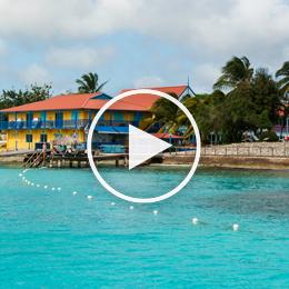 Divi Dive Bonaire 2