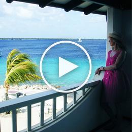 Sand Dollar Bonaire 1