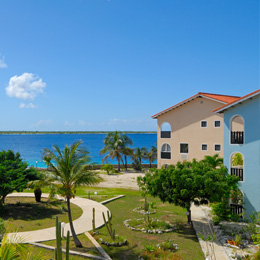 Sand Dollar Bonaire 3