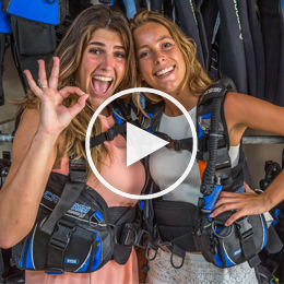 VIP Diving Bonaire 1