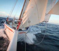 maritime film festival bonaire