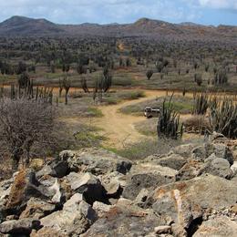 Adventure Makers Bonaire park tour